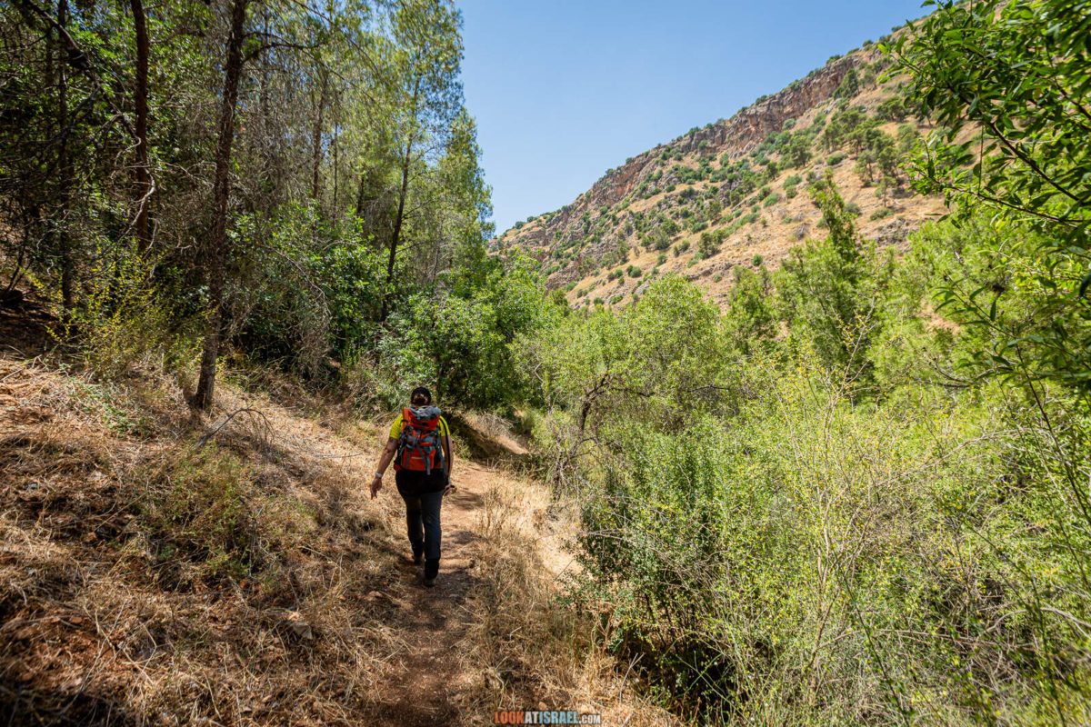 Тропа ПАЛЬМАХа на горах Нафатали | שביל הפלמח